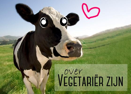 Over vegetarier zijn Blije koe