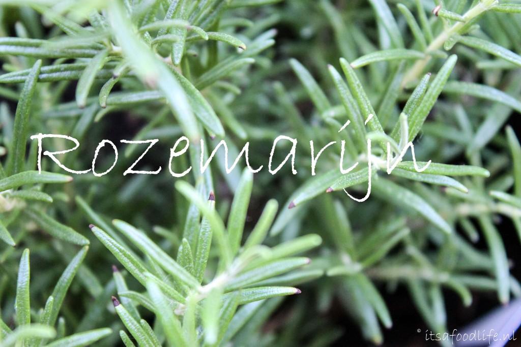 Rozemarijn Project moestuin | It's a Food Life