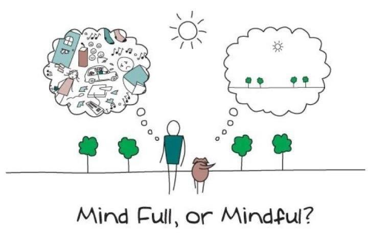 Mind-Full-of-Mindful | It's a Food Life