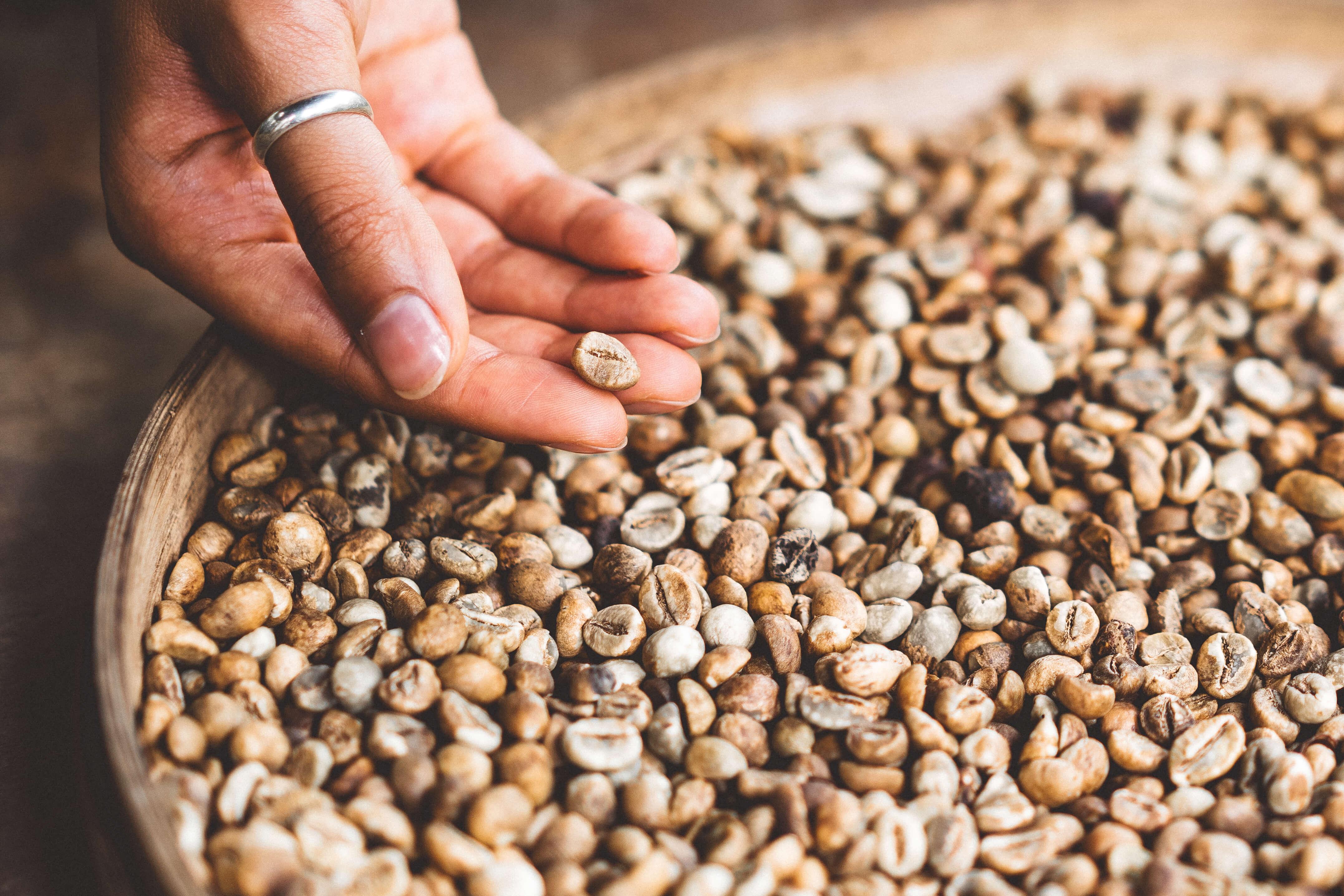 Waarom zijn vezels gezond? | It's a Food Life
