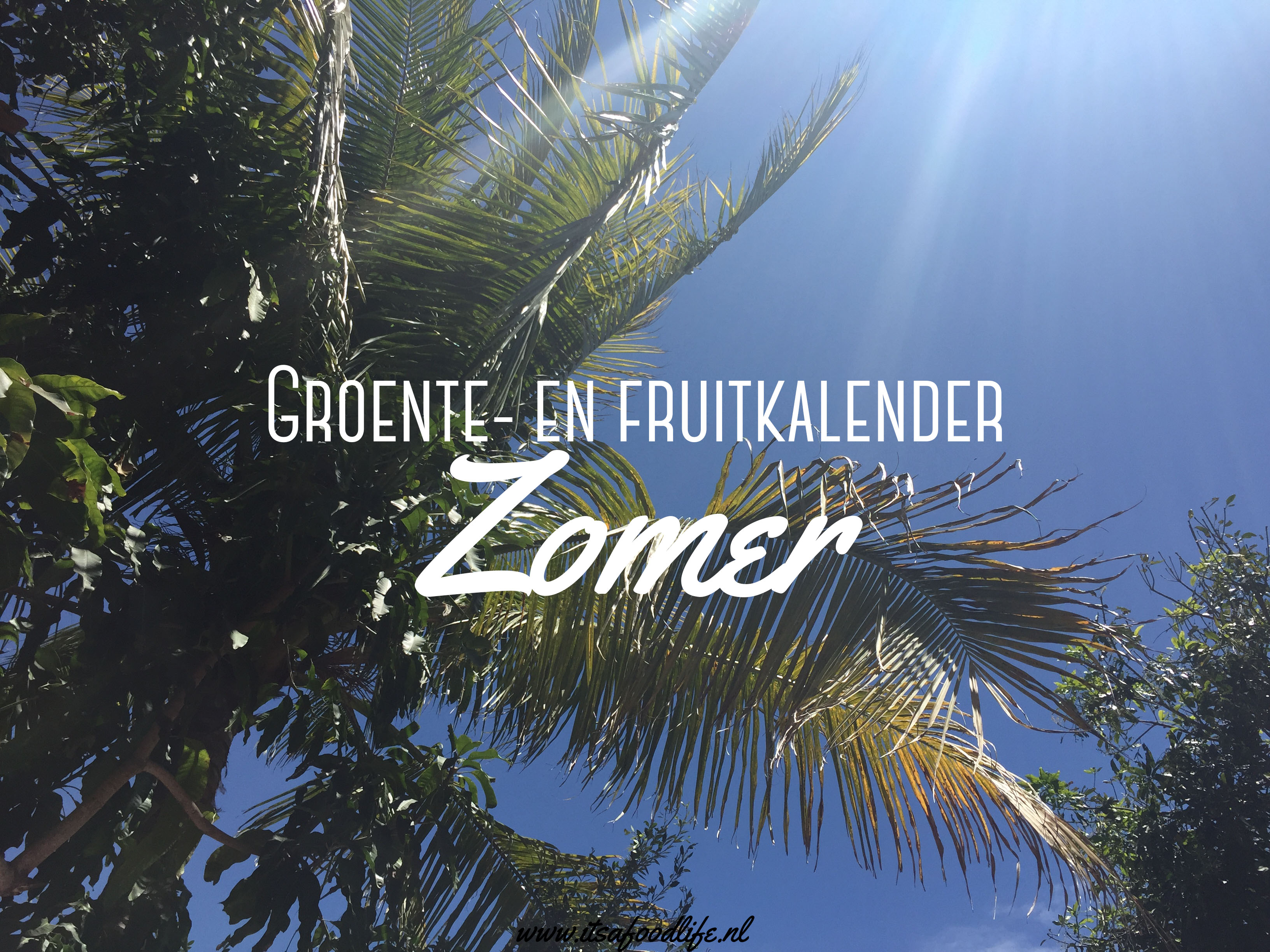 groente en fruitkalender: zomer - It's a Food Life